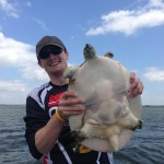 Lake Fork Giant Soft Shell Turtle
